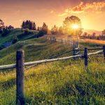 Ideas para mantener la población del mundo rural