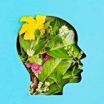 Mentalidad ecológica, día a día